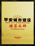 平安城市建设推荐品牌